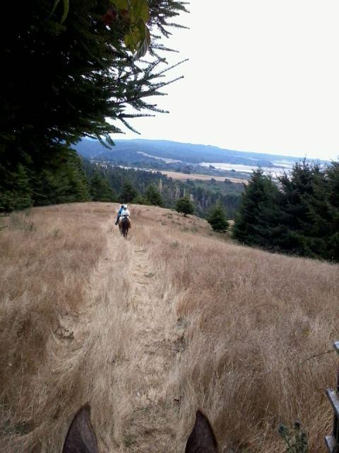 Mendo Trail