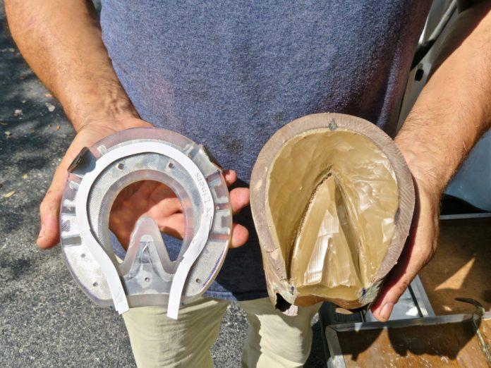EasyShoe Flex
