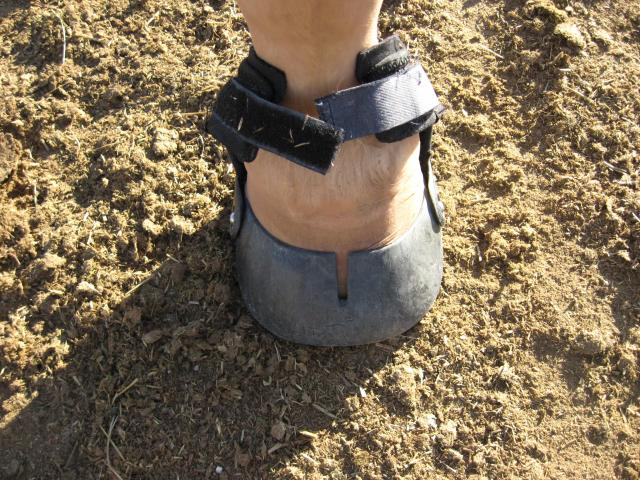 Apply the boot and attach the gaiter.