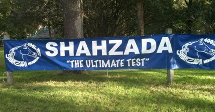 The Shahzada banner
