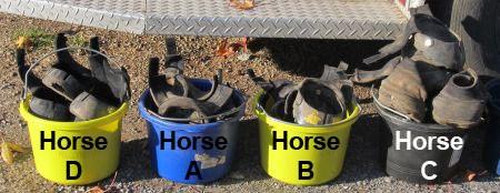 Boot Buckets