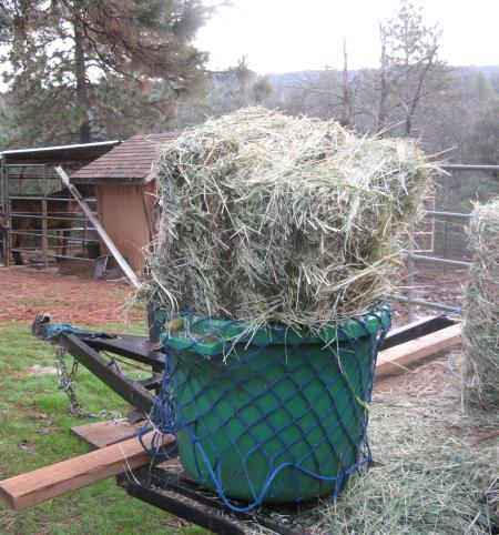 Dump the hay in...