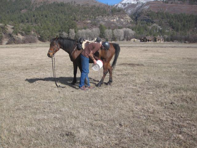 Adding Water to hoof boots