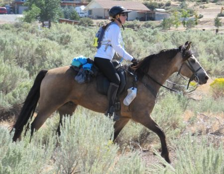 Golden Knight - Trot-by at Washoe Lake