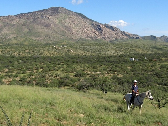 Ranch land.
