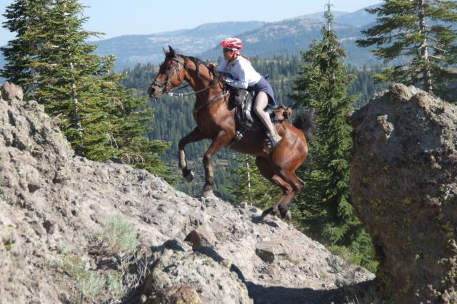 Lisa Ford and GE Cyclone going over cougar Rock in easyboots.  Tevis 2010