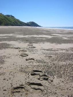 Wet sand stimulate sole