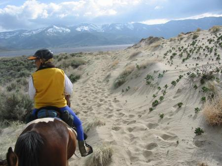 Beach-front trail