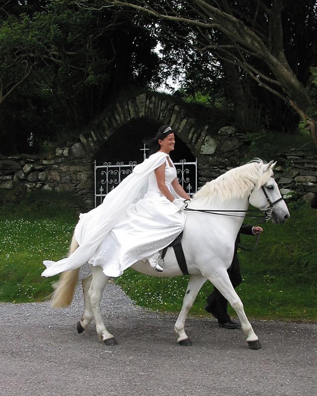 sarah-wedding 2