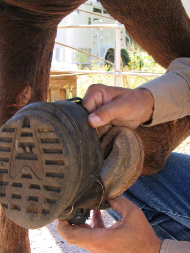 Applying the Boa Boots.
