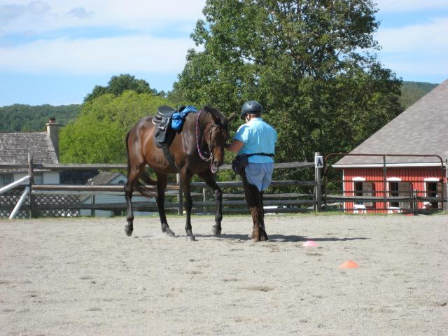Backing with a rein lift. No pressure.