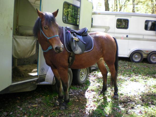 Abby Trail Ride 2
